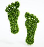 Nachhaltig leben – Kunststoffe vermeiden